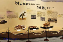プロローグ:化石の解釈も時代とともに「進化」する・・・