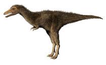 タルボサウルス(子ども)生体復元