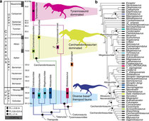 Apex predator role defined as largest predators per time bin, generally estimated as species with a femur length >1 m15; (a) trifaunal characterization of predator guilds with unique taxonomic and mass compositions: a diverse, mixed mass, Late Jurassic pr