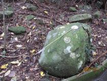 代々この石の上で行われて来たようだ。