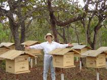 養蜂園内に無事設置された巣箱。パッケージでオア馴染み写真です。