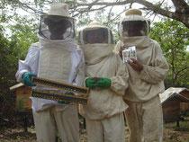 写真左から:昭和薬科大学名誉教授 藤本琢憲教授、写真中央:弊社社長、写真右:従業員の養蜂家