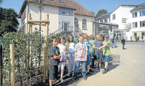 Neue Hainbuchenhecke: Die Schüler der Cornelia-Funke-Schule erkundeten in diesen Tagen bereits die neu gestalteten Bereiche des Schulhofs. Foto: Battefeld