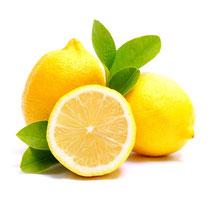 Zitrone (Citrus limonum)