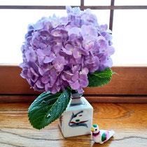 お稽古場に紫陽花を