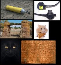 "Die Ausgangsbilder für die Fotomontage ""Die Hamster-Schneekugel"""