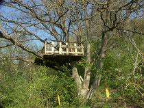 Baumhaus im Waldprojekt
