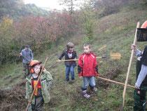 Schüler der Klasse 3a aktiv für die Natur