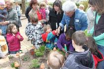 NaturtrainerInnen aktiv mit Kindern (Foto: NSZ Rheinauen)