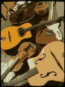 色々な弦楽器♪