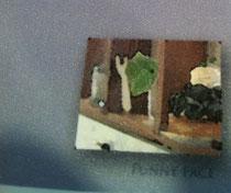 ファニーフェイスのポストカード