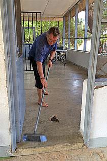 Ameisen-Hansj im Einsatz