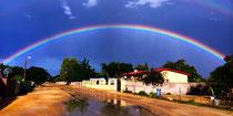 Regenbogen auf dem Heimweg