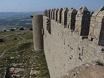Chateau de Montgri