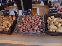 Cageots de pommes de terre au jardin des Plantes