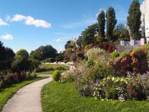 Jardin fleuri sous le soleil