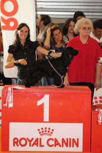 Giudice BIS Valeria Rodaro