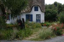 Foto: Naturnaher Garten