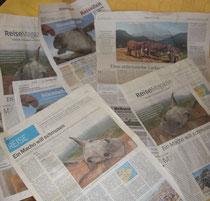 Berichte in europäischen Zeitungen...