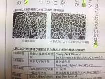 ガン細胞の分化誘導