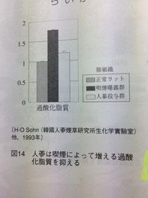 高麗人参の過酸化脂質抑制