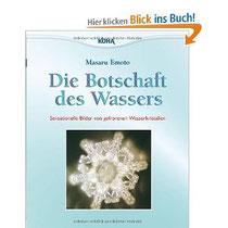 DIE BOTSCHAFT DES WASSERS - Sensationelle Bilder von gefrorenen Wasserkristallen - Masuru Emoto