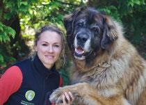 Verhaltensberatung Hundetraining Hamburg