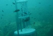 La máquina para generar energía a partir de la presión del agua
