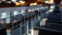 Blick in die Stallgasse von der zweiten Etage der Sattelkammer
