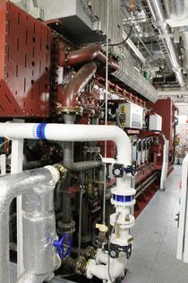 Einer der sechs Dieselgeneratoren (Motor  MAK, Generator Siemens; Foto Dr. Hochhaus))