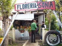 """""""Florería Sonia"""" am Eingang des deutschen Friedhofs in La Unión / Südchile"""