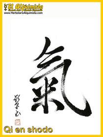 Qi en shodo - Cocina japonesa - Herbolario el Alquimista Arrecife Lanzarote