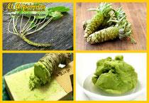 Wasabi Tipos de corte e ingredientes en la Cocina Japonesa - Herbolario El Alquimista Arrecife Lanzarote