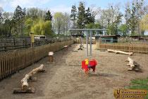 Spielplatzbau & Eröffnung