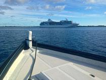 OCEANIA MARINA SHIP