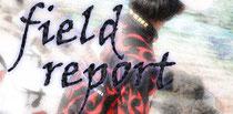YOU☆SHI フィールドレポート更新中