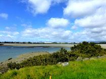 traversée S/N d'Auckland par la cycleway