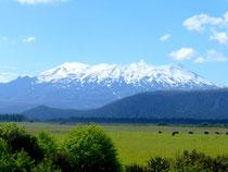Volcan Ruapehu