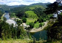 Méandre de la Whanganui River