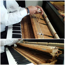グランドピアノの調律