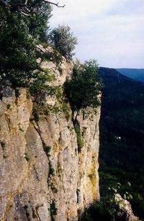 Die Felswand mit den Fundorten