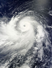 from the diplomat, typhoon
