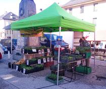 Plants légumes bio Viuz en Sallaz