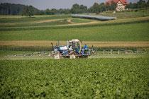 Gerne übernehmen wir den Pflanzenschutz komplett, und führen Ihre Kulturen zu einer erfolgreichen Ernte.Wir Spritzen 15 oder 27 m breit mit GPS und liefern Ihnen eine komplette Dockumentation I