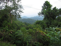 Mountain view from TV-Station Ranong province