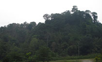 Doi Mussoe, 800 m, Province Tak