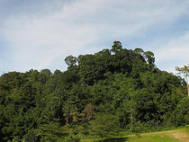 Doi Mussoe, Tak province