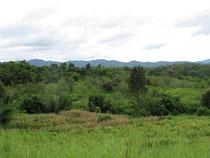 Nam Nao NP, Phetchabun