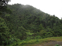 Mountain view in Nopphitam, Nakhon Si Thammarat province