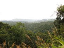 Mountain pass near Wiang Pa Pao 1200 meter, Chiang Rai province